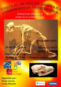 Visita Museo 2015-2